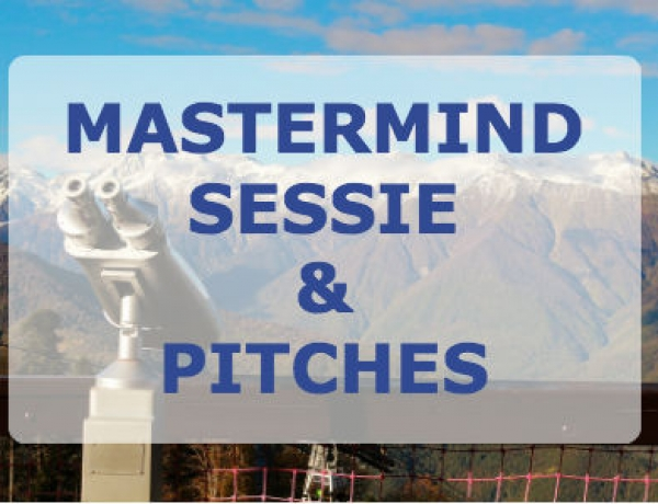 9 juni 2017   Netwerkbijeenkomst met Mastermind sessie en pitches